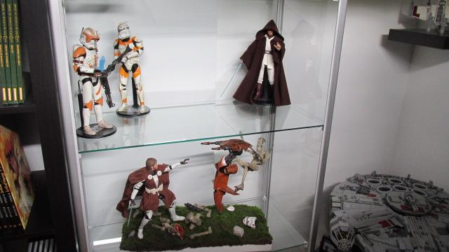 La collection de Nicks... SW IMG_0908
